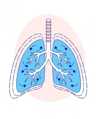 Попереднє насичення киснем за допомогою високоточного назального кисню проти щільної маски для обличчя під час індукції швидкої послідовності