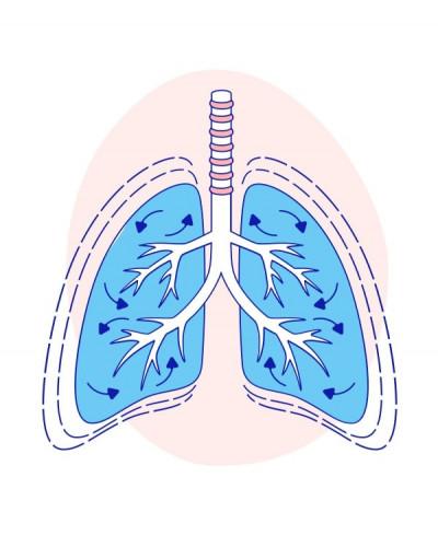 Попереднє насичення киснем за допомогою високопотокового назального кисню проти щільної маски для обличчя під час індукції швидкої послідовності
