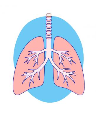 Високопотокова назальна канюля: революція в хірургії дихальних шляхів